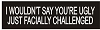 I Wouldn't Say You're Ugly just facially Challenged Helmet Sticker