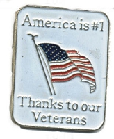 AMERICA IS 1ST THANKS TO OUR VETERANS VEST / HAT PIN