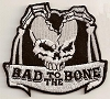 Bad To The Bone Split Skull Patch 3